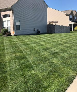 foliar-pak custom lawn program