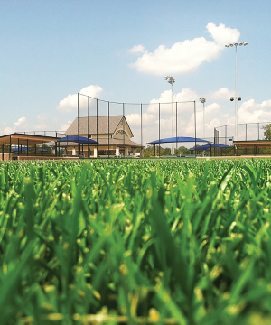 foliar-pak ultimate sports turf package establishment