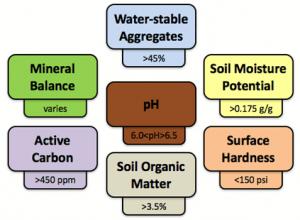 lawn & landscape healthy soil