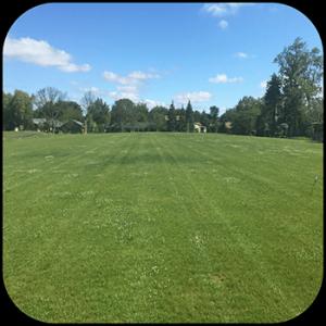 USTP Prospect Park after lawn & landscape