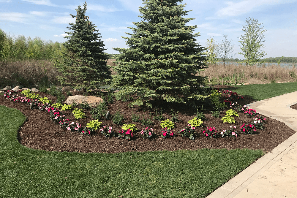 flowers before ultimate ornamental program