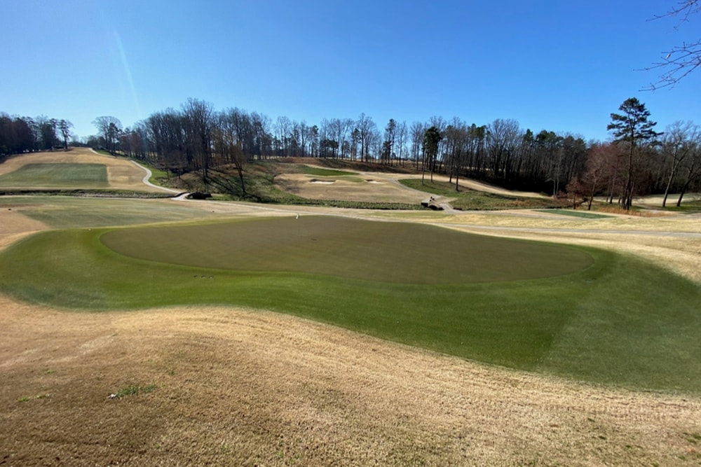 view of the green at forsyth country club