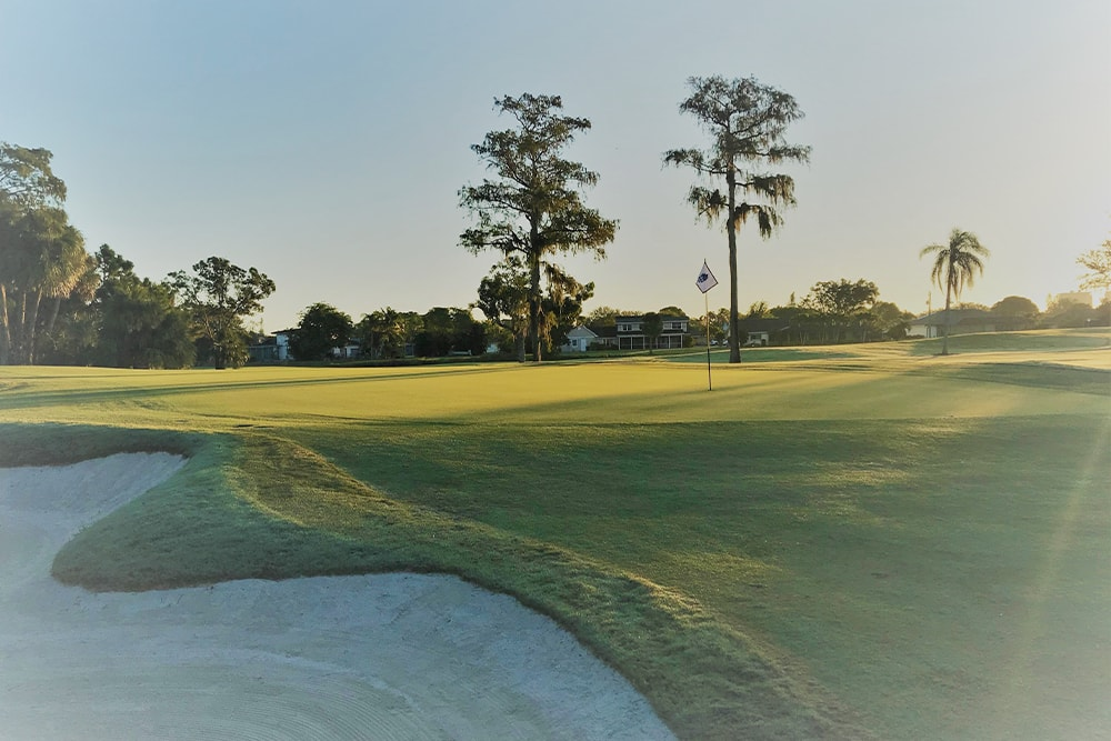 view of the course at cypress lake golf club