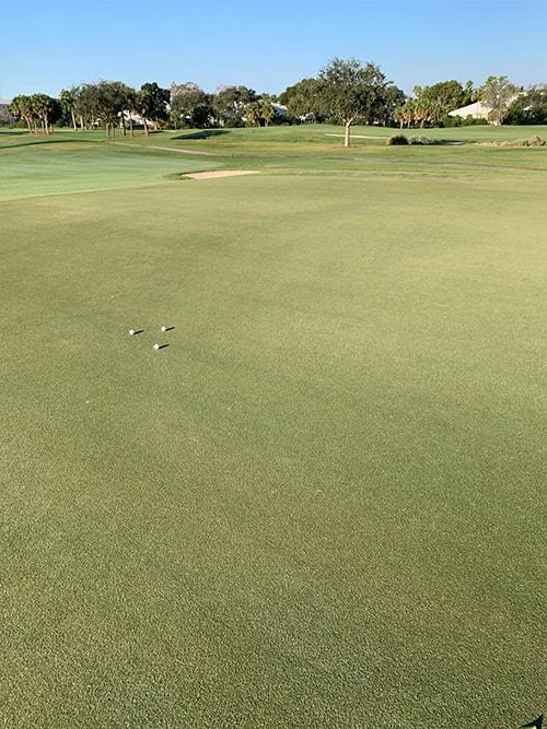 view of green at cypress lake golf club