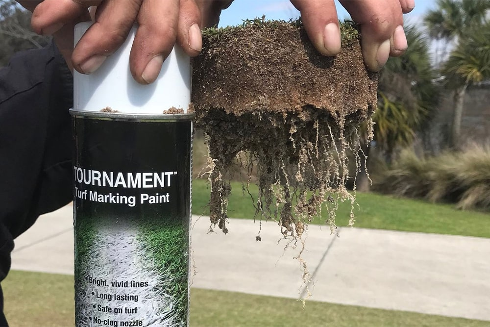 hand holds up tournament turf marking paint and a plug